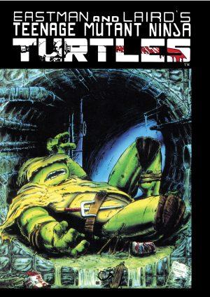 Teenage Mutant Ninja Turtles vol. 4